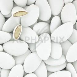 Avola Dauphine BLANC mat - 1kg en stock