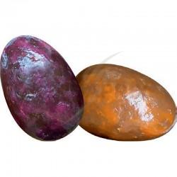 ~Carafruits boîte 1kg en stock