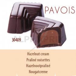 Chocolat noir praliné noisettes vrac