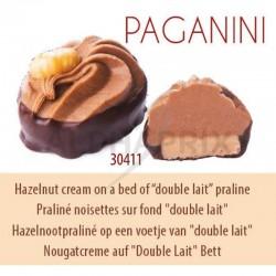 ~Chocolat lait praliné noisettes double lait vrac