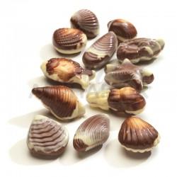 Fruits de mer pralinés kg