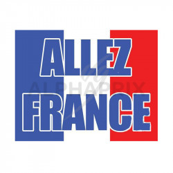 Drapeau Allez France en stock