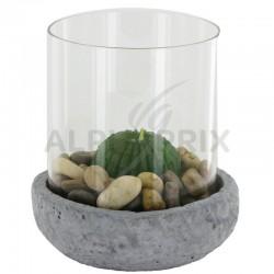 Bougeoir décor zen bougie cactus-cylindre verre en stock