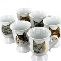 Mazagrans céramique décor chat en stock