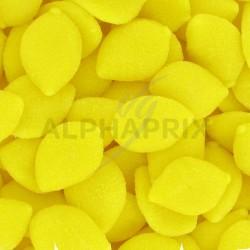 Citrons jaunes plat GM kg Fini en stock